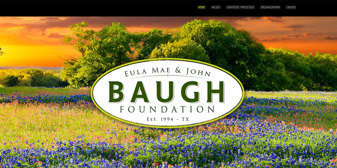 Baugh Foundation website image